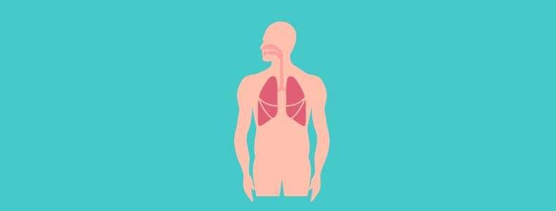 Melhora a capacidade respiratória