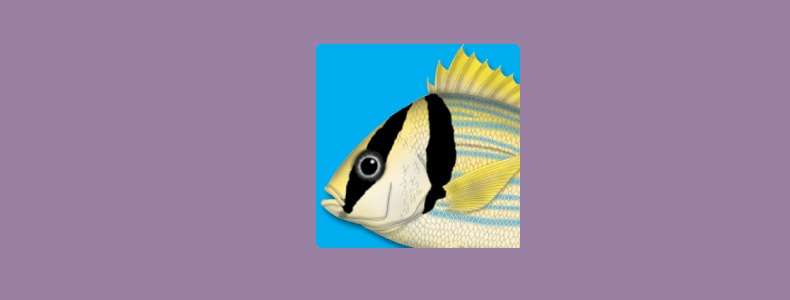 Peixes Marinhos do Brasil app